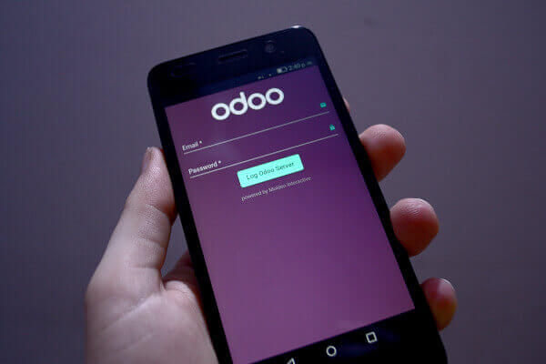 Moldeo Interactive - Odoo Mobile Integration